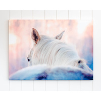 Canvas Print - Dusty White Horse - 70x50