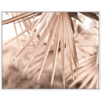 Floating Frame - Muted Fan Palm Breeze - 100x80