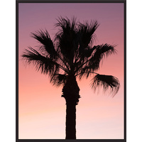 Floating Frame - Dusty Palm Sunset Solo - 90x115