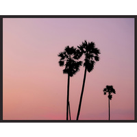 Floating Frame - Dusty Palm Sunset Cluster - 90x115
