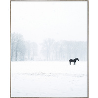 Floating Frame Luxe - Winter Lone Horse - 100x80