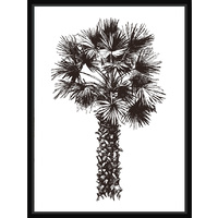 Thin Floating Frame - Palm Sketch B - 30x40