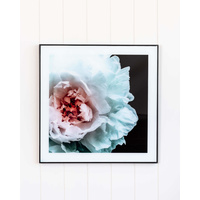 Glass Artwork - Peony Bloom - 50x50