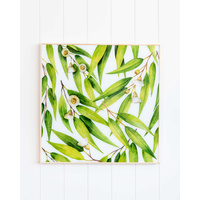 Glass Artwork - Eucalyptus Blossoms - 50x50