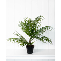 Artificial Plant - Kwai Palm Large (MIN 2) - 51cm