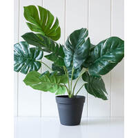 Artificial Plant - Monstera - 42x42 (MIN 2)