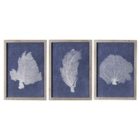 Premium Framed Art - Navy Coral with Aged Timber A - Set of 3