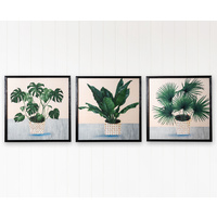 Premium Framed Glass Artwork - Modern Plant Illustrations - Set of 3
