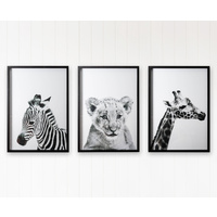Premium Framed Glass Artwork - Jnr. Wild Baby Animals - Set of 3