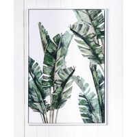 Premium Edition - Banana Leaves Cluster - 62x92