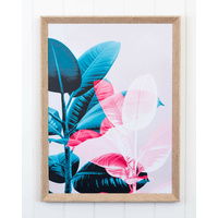 Framed Artwork - Left Rubber Plant - 45 x 60