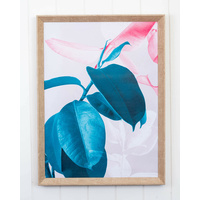 Framed Artwork - Front & Centre Rubber Plant - 45 x 60