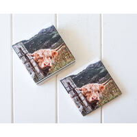 Ceramic Coaster - Peeking Bovine - Set 4 - (MIN 2)