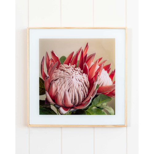 Glass Artwork - Protea Portrait (MIN 2) - 30x30