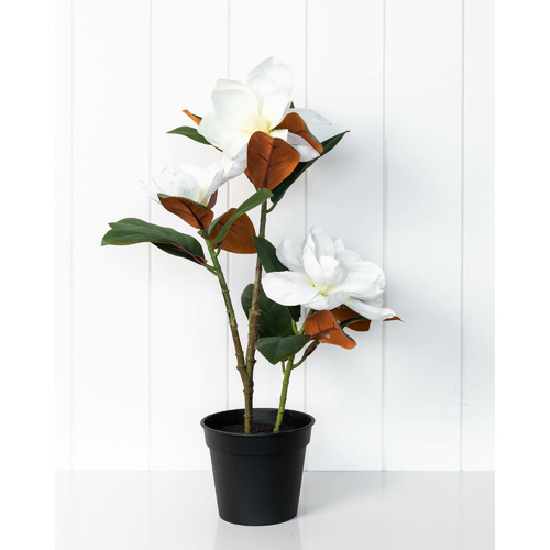 Artificial Plant - Magnolia with Flowers (MIN 2) - 51cm